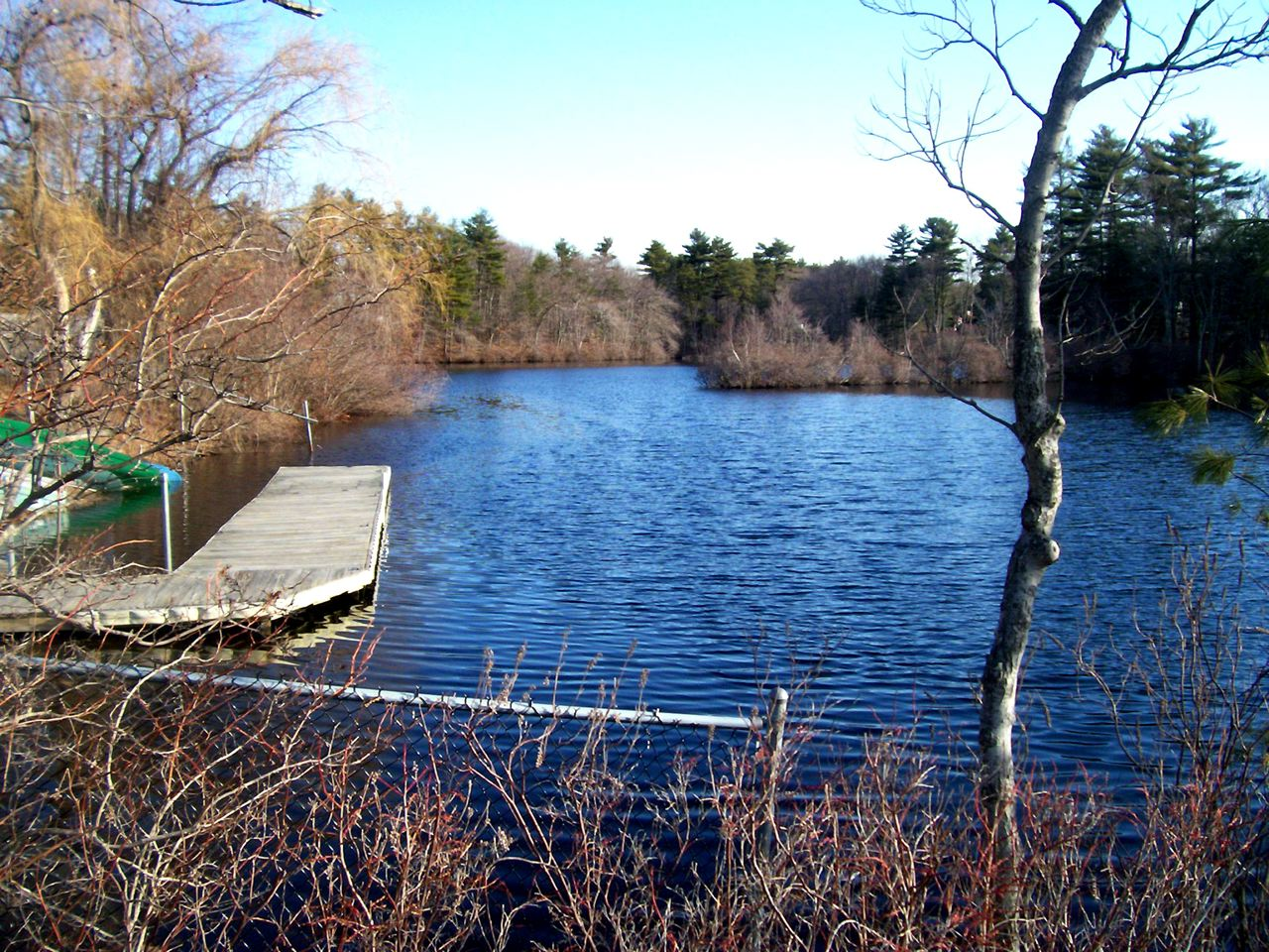 Willett Pond Area, Walpole, MA