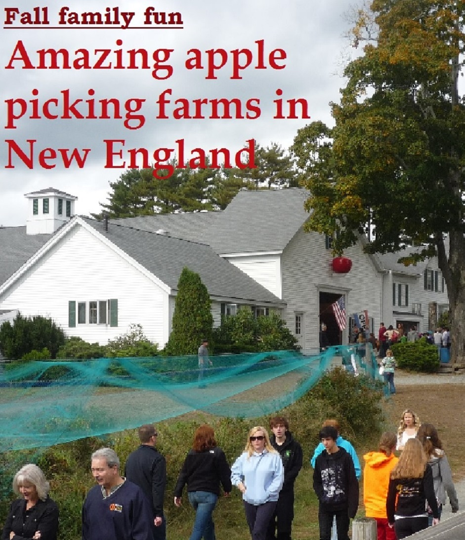 Looking to go apple picking in the fall? Here are nine great apple picking destinations in New England.