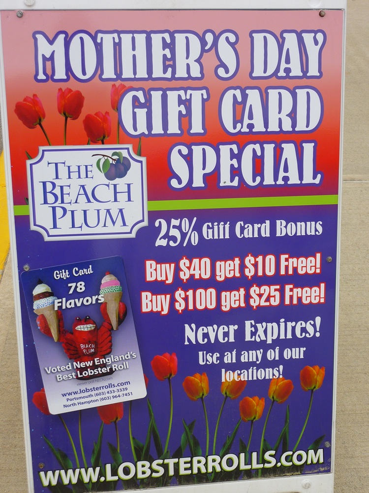 Beach Plum New Hampshire promo