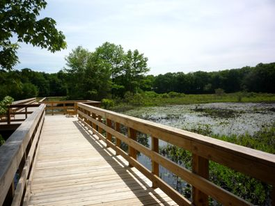 Nature Trail Boardwalk photo, Patriot Place, Foxboro, Mass.