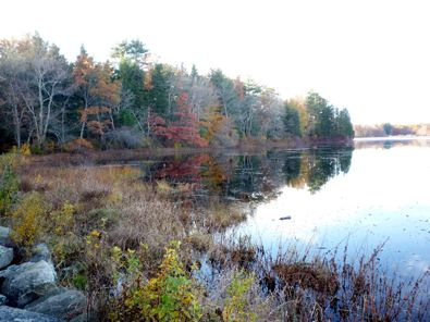Borderland State Park photo, Easton, Mass