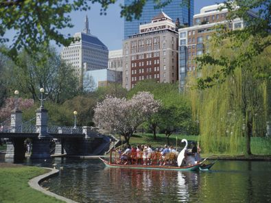 Boston Public Garden photo by Sarah Musumeci
