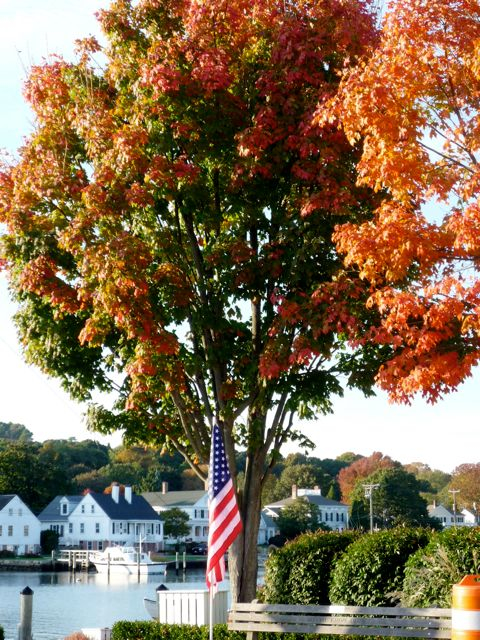 Fall foliage in Mystic CT