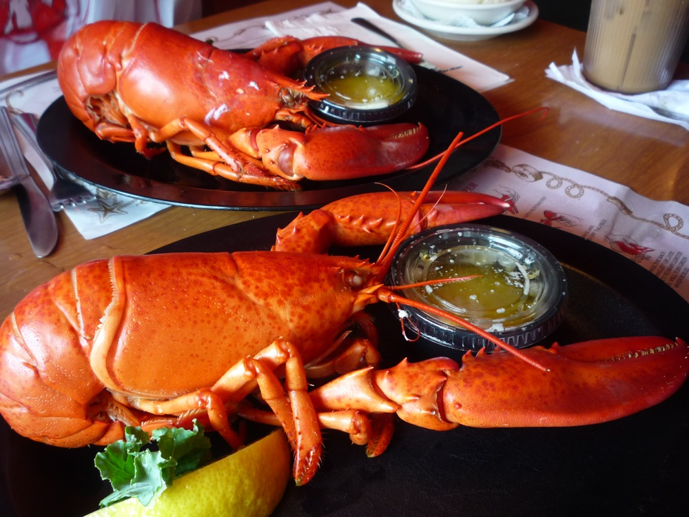 Lobster from Warren's Lobster House, Kittery, Maine