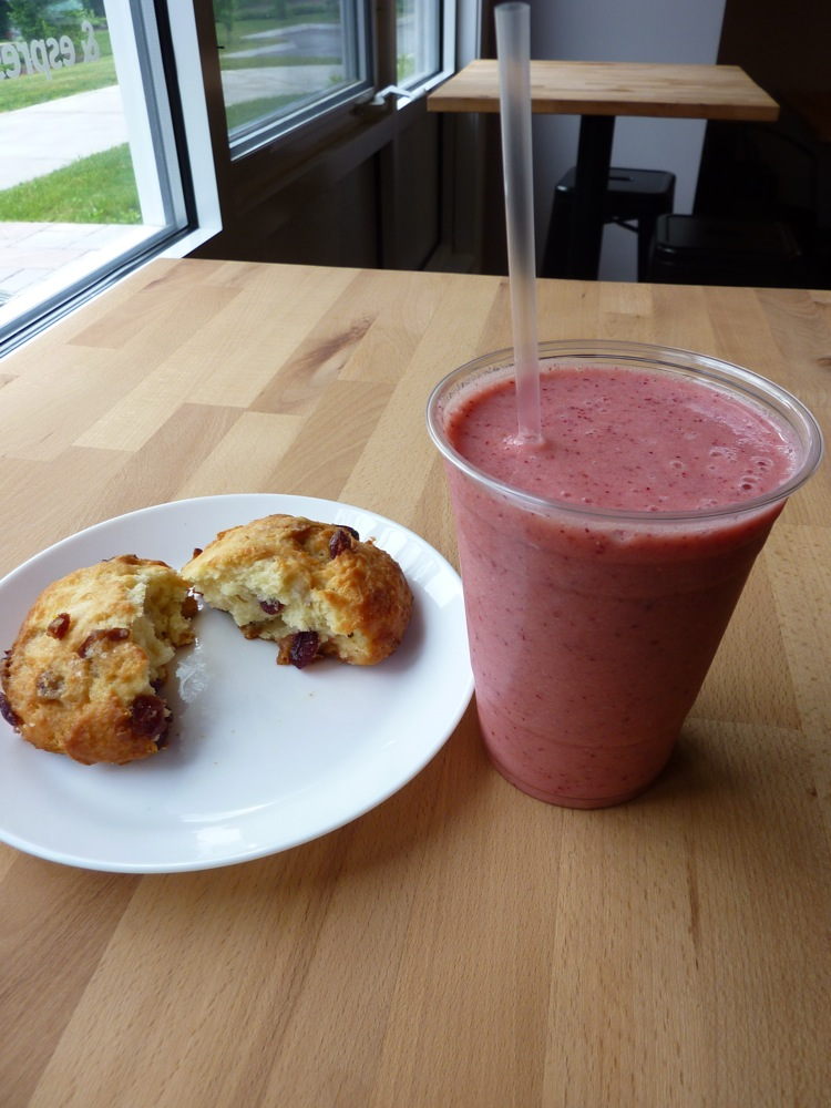 Organic Buzz Cafe Norfolk Ma
