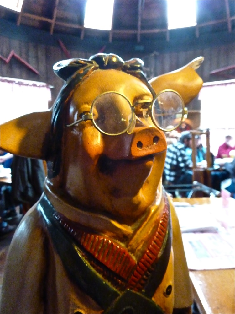 Does this pig know maple baby back ribs are on the menu at Parker's Maple Barn in Mason, N.H.?