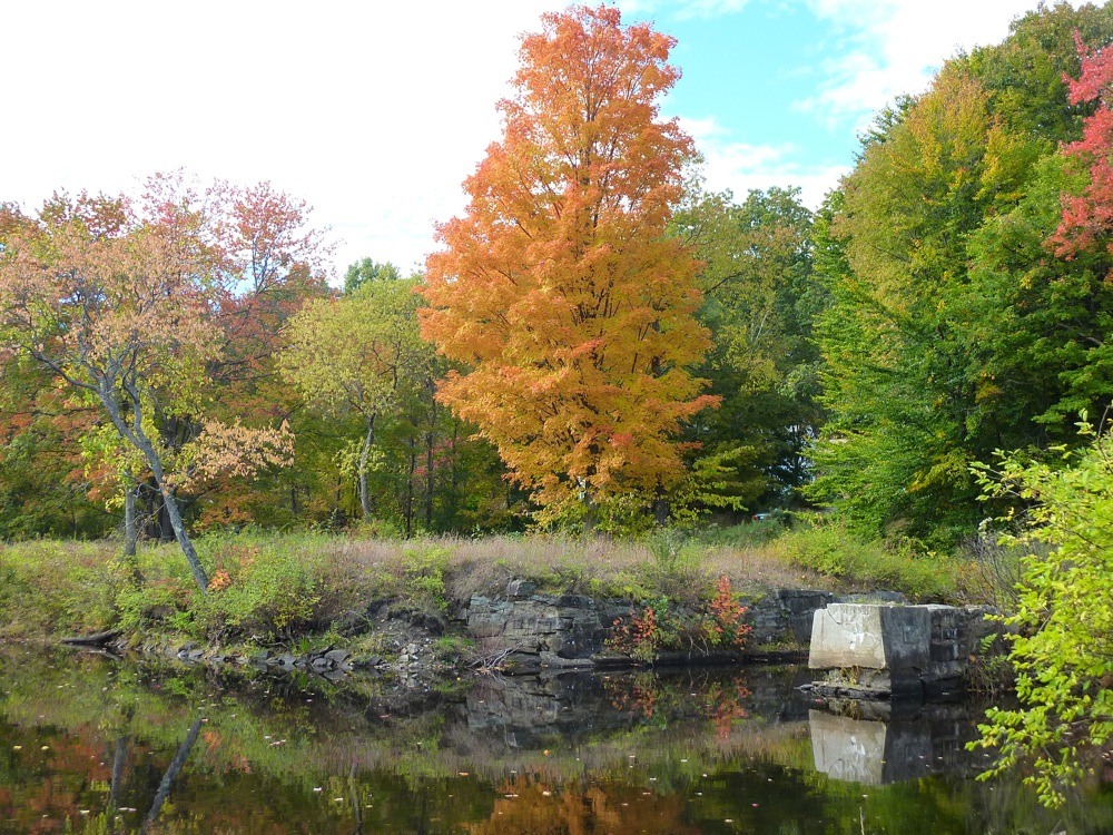 Foliage is Peterborough NH is spectacular in October!