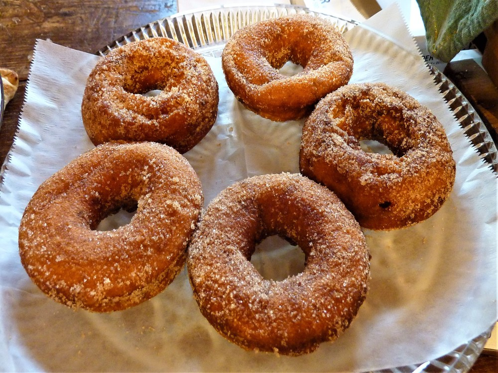 Homemade apple cider doughnuts from Red Apple Farm in Phillipston, Mass.