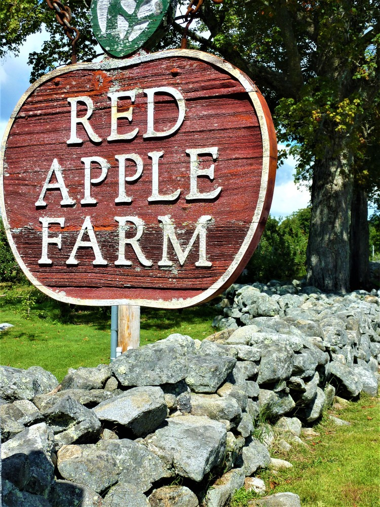 Sign, stone wall at Red Apple Farm, Phiilpston, Mass.