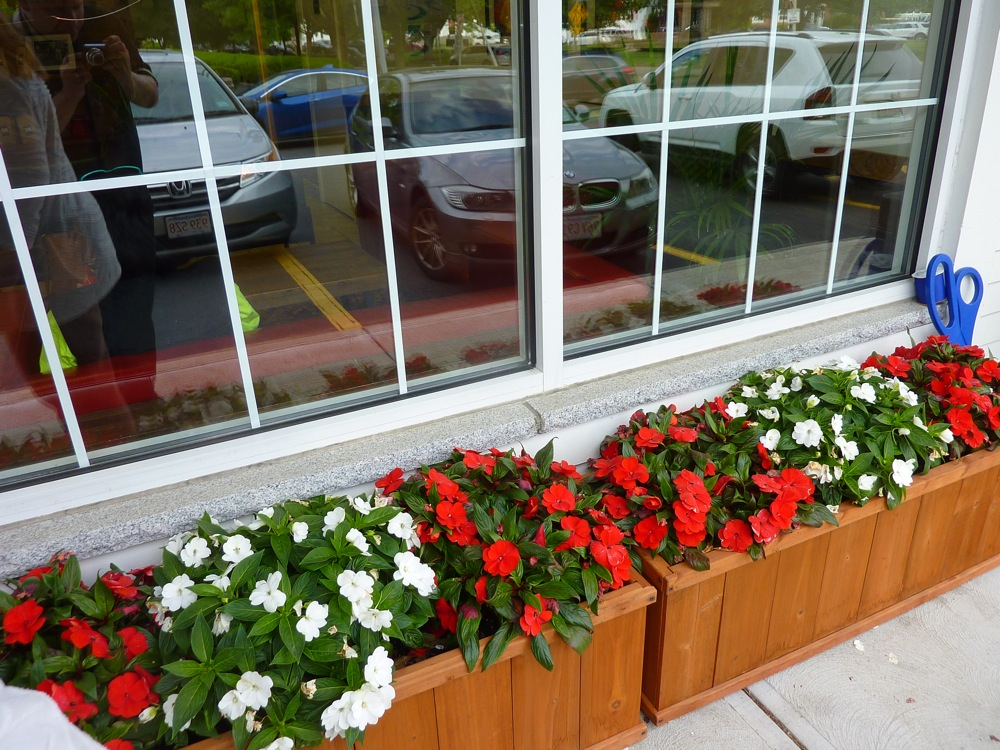 Flower bed at Red Cherry Cafe in Walpole, MA.
