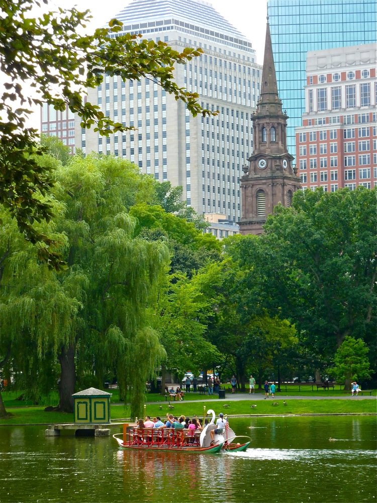 Swan Boats of Boston is a grand local tradition in the heart of Boston.