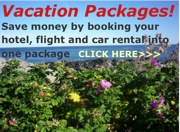 Vacation Packages Hotel Flight Car graphic