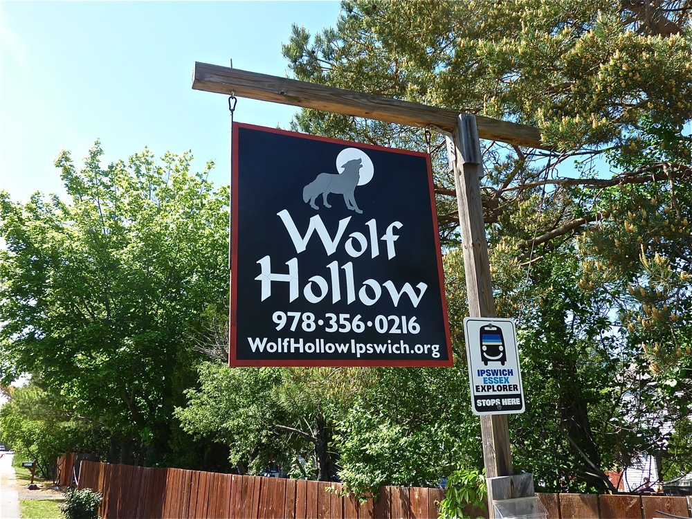 Wolf Hollow sign in Ipswich MA